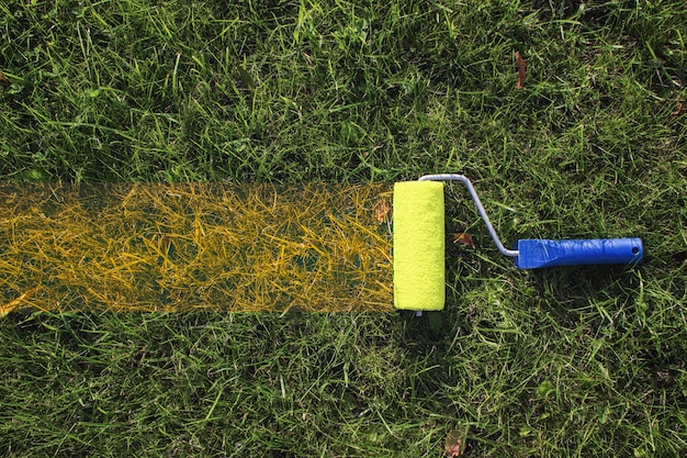 Top view of a paint roller with an blue handle, painting a grassy strip using orange color. autumn.