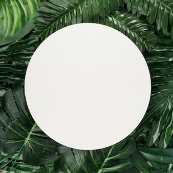 Вид сверху пальмовых листьев с копией пространства