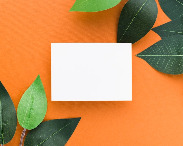 Top view paper blank business card