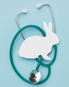 Top view of paper bunny with stethoscope for animal day