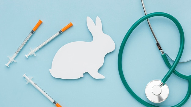 Top view of paper bunny with stethoscope and syringes for animal day