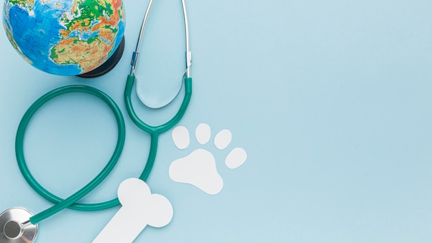 Top view of paper paw print and bone with stethoscope and planet earth for animal day