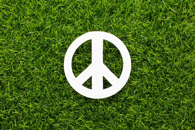Top view of peace sign on grass