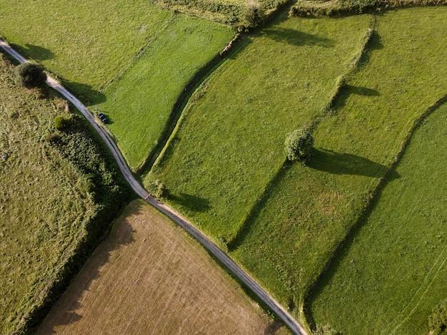 平面図の平和な緑の土地