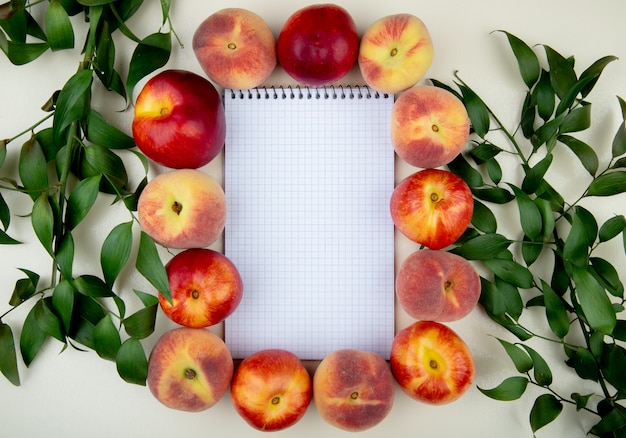Top view of peaches around note pad on white surface decorated with leaves with copy space