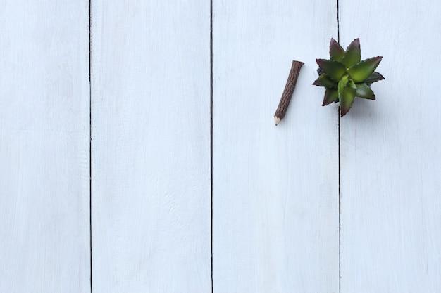 흰색 나무 바닥에 상위 뷰 연필과 화분 및 복사 공간이 있습니다.