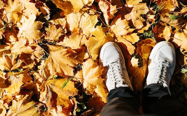 Вид сверху человек в серых туфлях, стоящий на упавшей ярко-желтой листве, копией пространства. осенний сезон, привет октябрь.