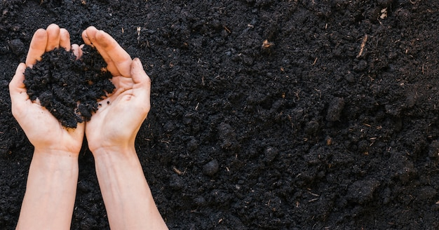 Top view of person's hand holding soil