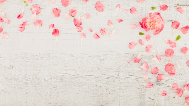 Top view petals on wooden background