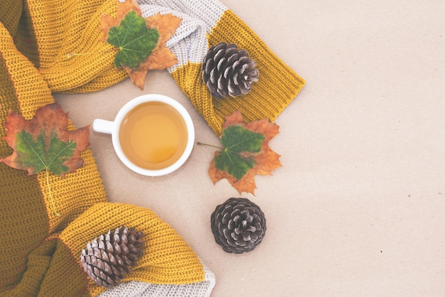Top view photo of orange sweater with cup of tea and yellow autumn leaves and pine cones on isolated background with blank space