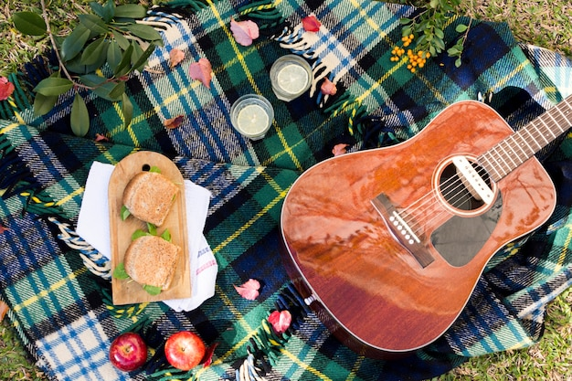 Top view picnic with acoustic guitar