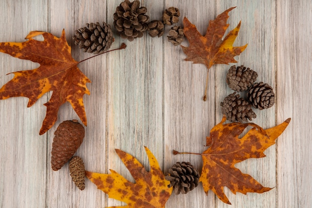 Top view of pine cones with leaves isolated on a grey wooden table with copy space