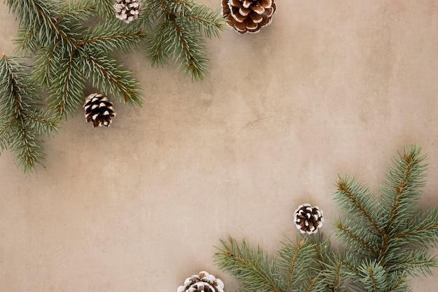 上面図の松の葉と針葉樹の円錐形
