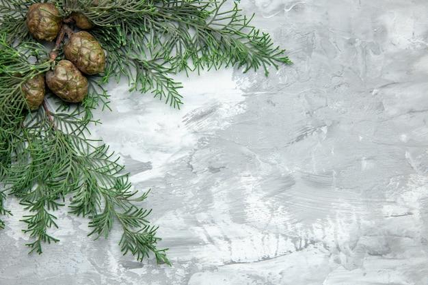 회색 배경에 상위 뷰 소나무 나뭇가지 솔방울