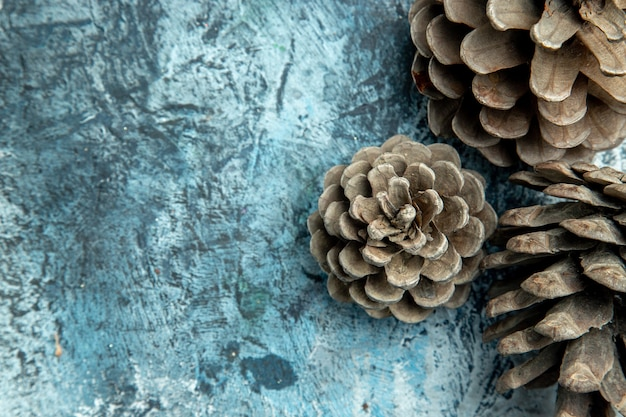 Top view pinecones on dark surface with copy place