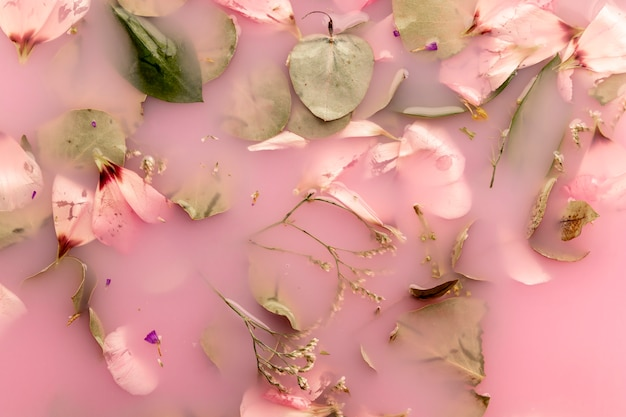 Top view pink petals and leaves in pink colored water