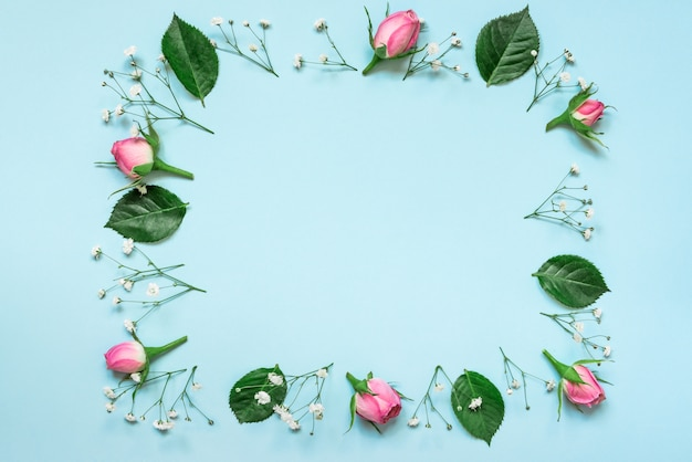 Top view of pink roses and green leaves wreath arranged in square on blue background. abstract floral background.