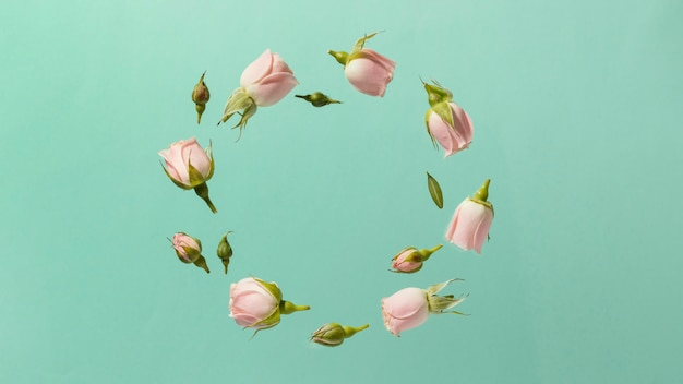 Top view of pink spring roses in circle with copy space