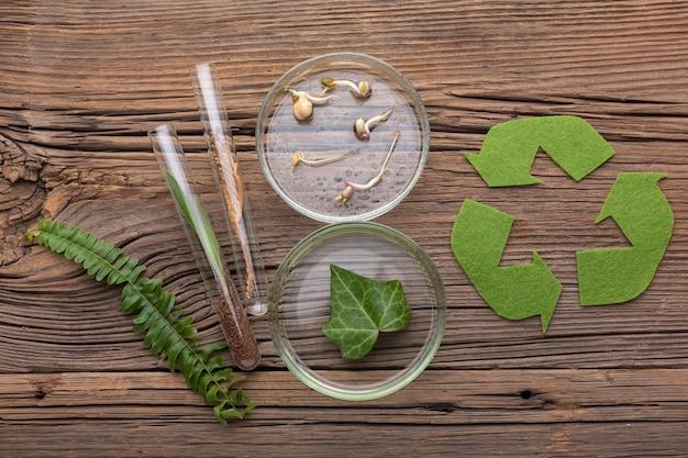 トップビューの植物と実験用ガラス器具