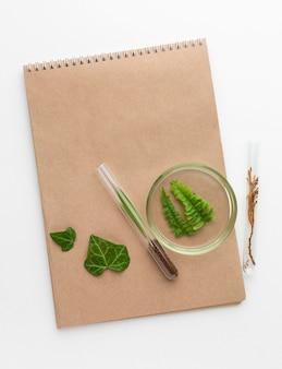 トップビューの植物とノートブックの配置