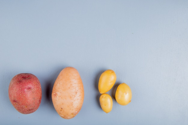 Vista superiore delle patate come bianco rosso e nuovo su superficie blu con lo spazio della copia