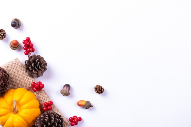 Top view of pumpkin and red berries on white paper background. autumn concept or thanksgiving day.