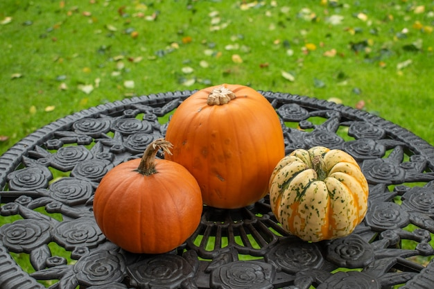 Top view of pumpkins on the table, halloween concept.