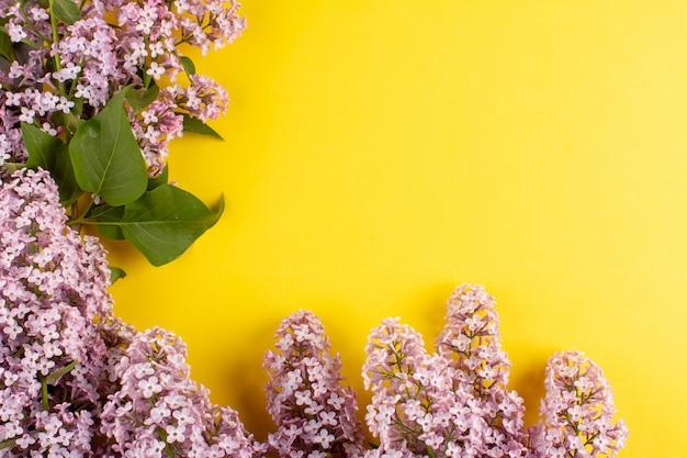 黄色の床に美しい紫色の花をトップビュー