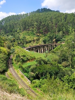 Top view of the railway in the jungle and the famous nine-arch bridge