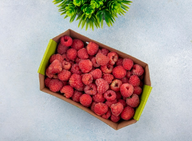 Top view of raspberries in cardboard box with flower on white surface