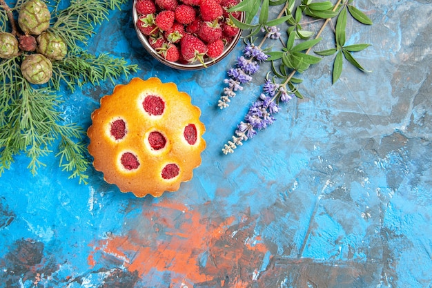 Top view of raspberry cake, bowl with berries and pine tree branches on blue surface