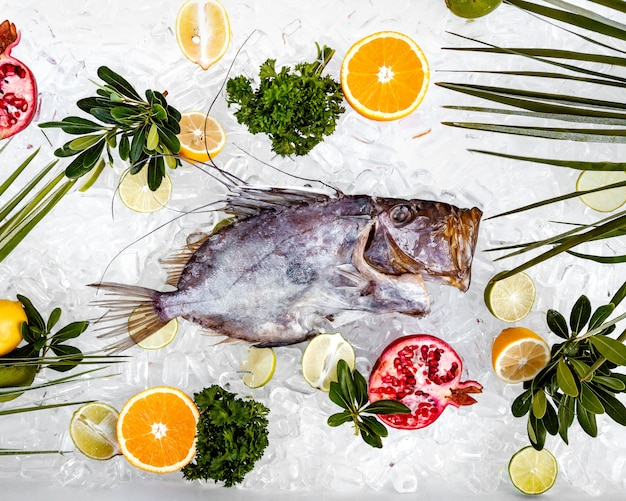 Top view of raw fish placed on ice surrounded with fruit slices