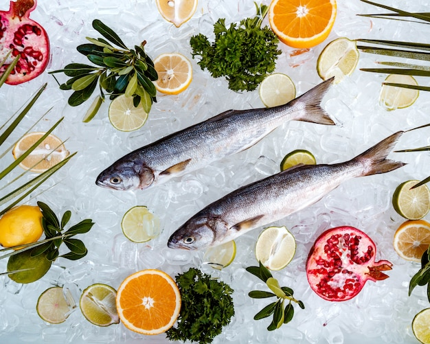 Top view of raw fish placed on ice surrounded with fruit slices _