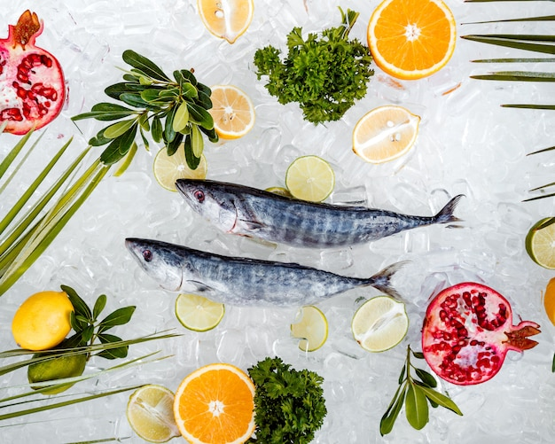 Top view of raw fish placed on ice surrounded with fruit slices ____