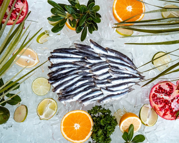 Top view of raw sprats placed on ice surrounded with fruit slices
