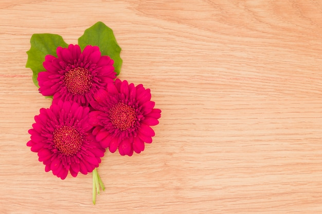 Top view red flowers on wooden background