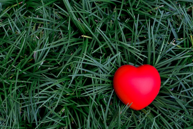 Top view of red heart placed on green grass
