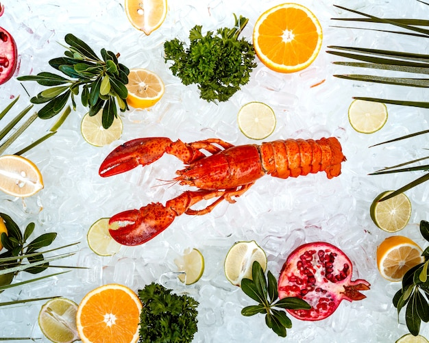 Top view of red lobster placed on ice surrounded with fruit slices