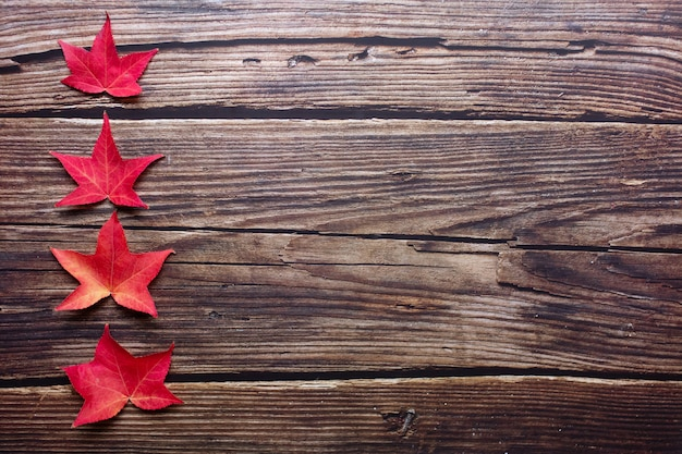 Top view of red maple leaves in one row from small to large dark rustic wooden background.