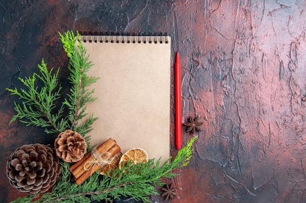 Vista dall'alto penna rossa un taccuino rami di un albero di pino anice stellato pigne nelle quali fette di limone essiccate sulla superficie rosso scuro posto libero