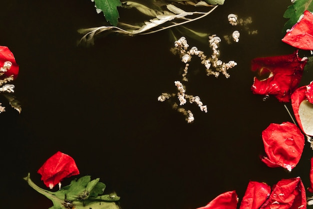 Top view red petals in black water