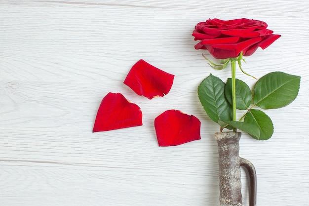 Вид сверху красная роза на светлом фоне брак чувство страсть пара любовь любовник цвет сердца
