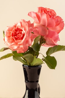 A top view red roses beautiful pink flowers inside black jug isolated on table and pink
