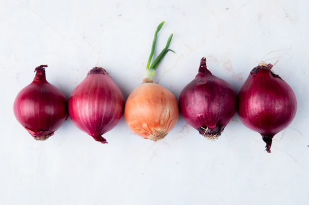Top view of red and yellow onions on white background with copy space
