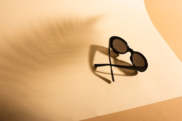 Top view retro sunglasses with shadow