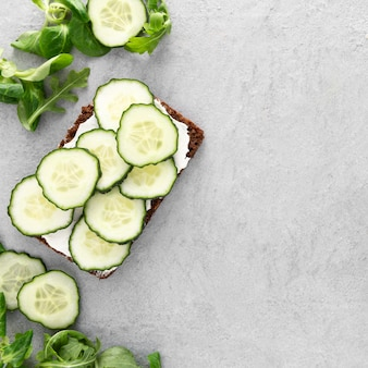 Top view sandwiches with cucumbers and salad with copy-space