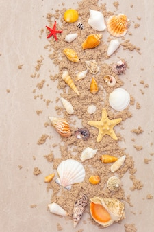 Top view of seashells with sand