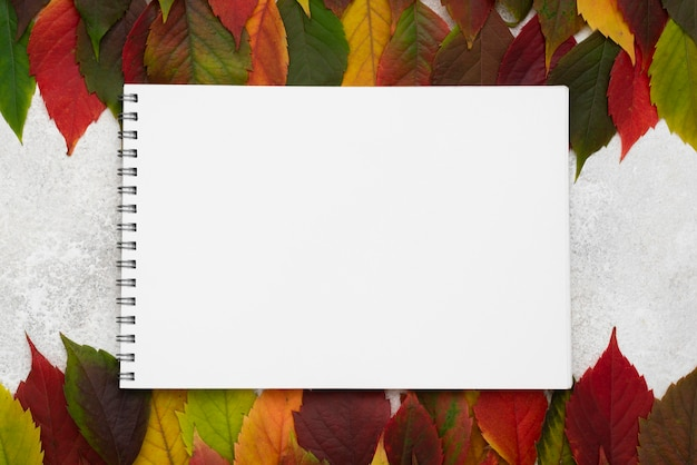 Top view of selection of autumn leaves with notebook
