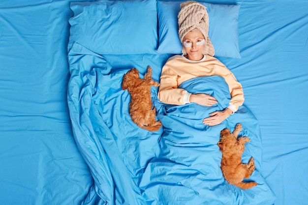 Top view of senior european woman wears pajama wrapped towel on head eye patches to reduce wrinkles stays in bed with two fluffy puppies undergoes beauty treatments at cozy bedroom. people lifestyle