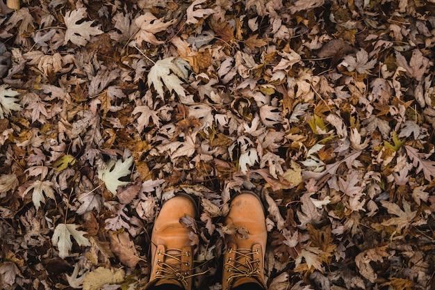 地面に茶色のブーツと葉の平面図のショット